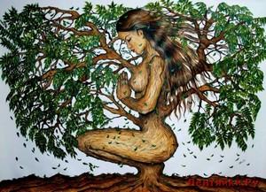 Как правильно использовать природную энергию деревьев