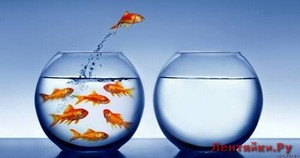 Как выйти за рамки привычного и начать жить