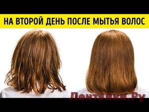 9 Советов, Как Перестать Мыть Волосы Ежедневно