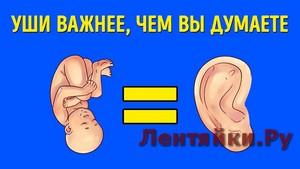 Что Уши Могут Рассказать о Вас