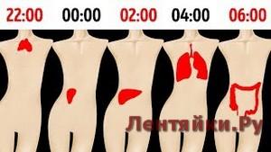 Почему Вы Просыпаетесь в Одно и то же Время Каждую Ночь